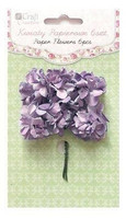 Carnation Purple 6 kpl