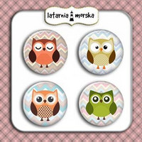 Flair Buttons: Owls  -  koristeet