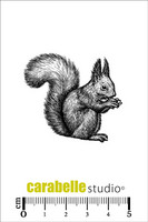 Carabelle Studio: Squirrel