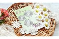 ENNAKKOVARATTU Agiart Camomilla Flowers ( Päivänkakkara)