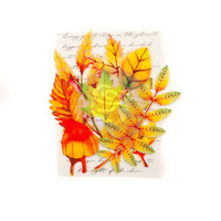 Prima Marketing Leaf Embellishments: Autumn Maple