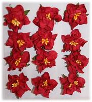 Reprint: Gardenias Red  - paperikukkapakkaus