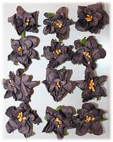 Reprint: Gardenias Amethyst - paperikukkapakkaus