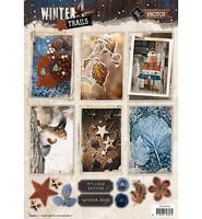 Winter Trails #625 stanssattu korttikuva-arkki