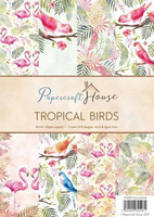 Tropical Birds A4 - paperikokoelma