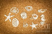 Di Mare Shells  -chipboardpakkaus