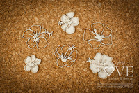 Vintage Tropical Island: Individual Hibiscus Flowers  -chipboardpakkaus
