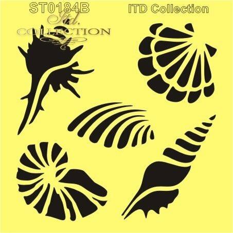 ITD Collection: Sea Shells 6x6   - sabluuna