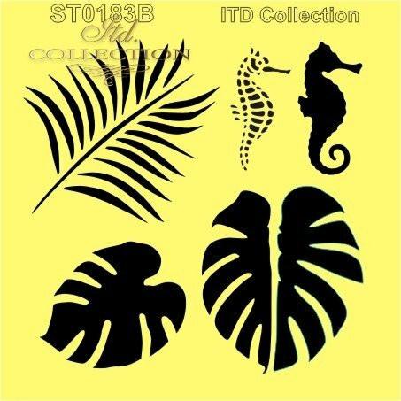 ITD Collection: Tropical 6x6   - sabluuna