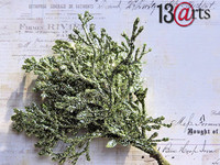13arts vaaleanvihreät kimaltavat oksat