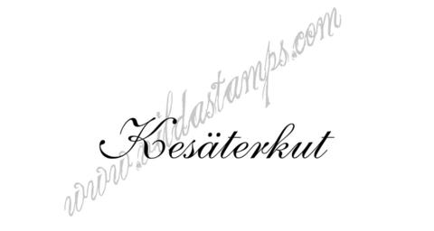 Vilda Stamps: Kesäterkut - leimasin