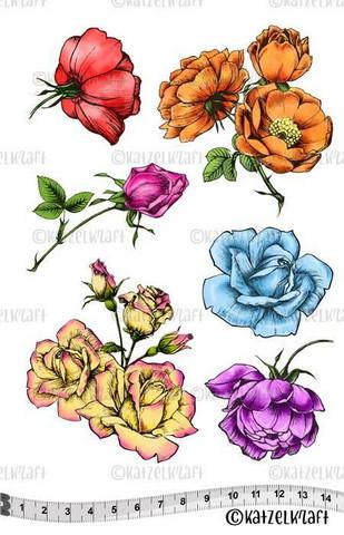 Katzelkraft: Roses A5 - unmounted leimasinsetti