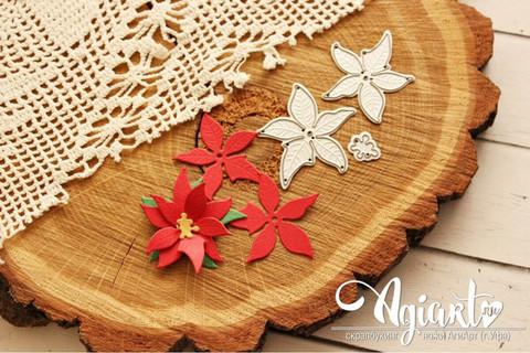 Agiart: Poinsettia Small -stanssisetti