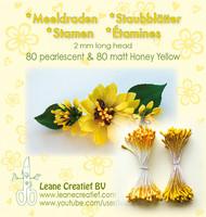 Leane Creatief Heteet  160 kpl -  Pearlecent & Matt Honey Yellow 2 mm