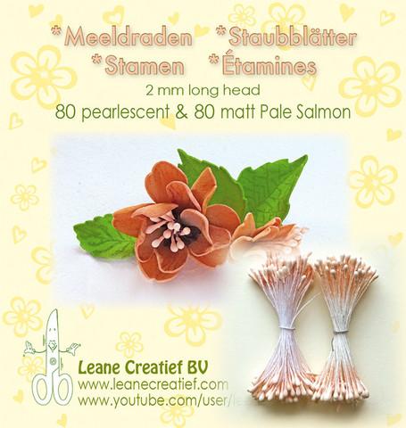 Leane Creatief Heteet  160 kpl -  Pearlecent & Matt Pale Salmon 2 mm