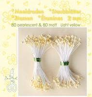 Leane Creatief Heteet  160 kpl -  Pearlecent & Matt Light Yellow 2 mm
