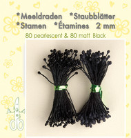 Leane Creatief Heteet  160 kpl -  Pearlecent & Matt Black 2 mm