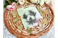 Agiart: Camomilla & Anemone Leaves  -leimasinsetti