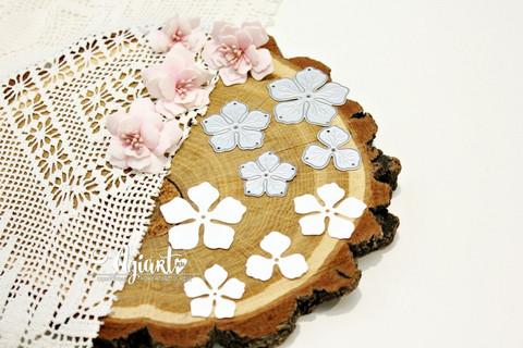 Agiart: Apple Blossom (Omenankukka)  -stanssisetti