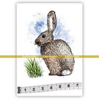 Katzelkraft: Rabbit (Labereau)  - unmounted leimasin