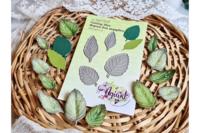 Agiart: Mint Leaves (Mintun lehti) -stanssisetti