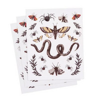 Halloween Stickers: Snakes & Insects