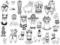 Aladine Scrap Stamps: Llamas - leimasinsetti