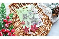 Agiart: Royal Poinsettia  -stanssi- ja leimasinsetti