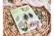 Agiart: Fairy Leaves  -stanssi- ja leimasinsetti