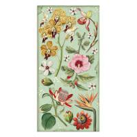 Stamperia Collectables: Amazonia 6 x 12 paperikokoelma