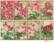 Decorer: Roses - minipaperisetti