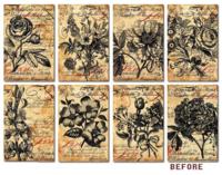 Decorer: Before  - minipaperisetti