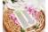 Agiart: Phlox (Leimukukka)  -stanssisetti
