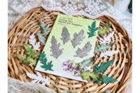 Agiart: Field Herbarium  -stanssisetti