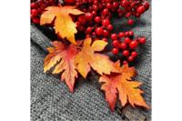 Agiart: Autumn Leaves -stanssisetti