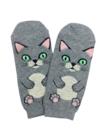 Kissasukat Kissanpäivät