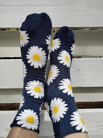 Hauskat sukat - Päivänkakkara