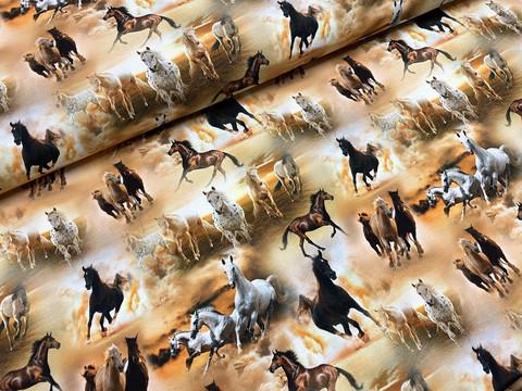 Wild horses, copper, trikoo