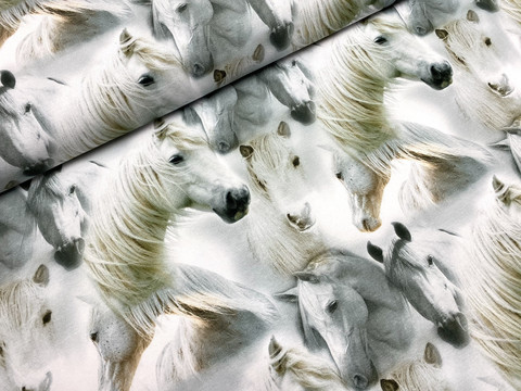 Wild horses, white, trikoo