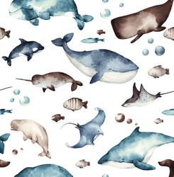 Under the sea, trikoo