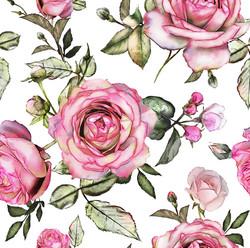 Giant pink roses, trikoo