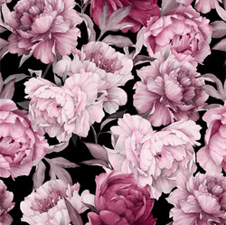 Watercolor peonies, old rose, trikoo