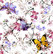 Butterflies, white, joustocollege