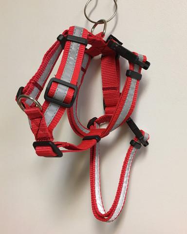 Designdog y-jarruvaljas S punainen