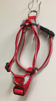 Designdog y-valjas M + punainen