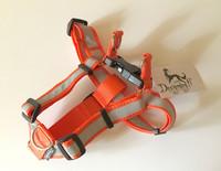 Designdog Step-in valjaat M 25 mm oranssi