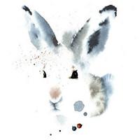 Ester Visual: Metsäjänis  50x70 cm