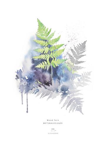 Ester Visual: Metsäalvejuuri 50x70 cm