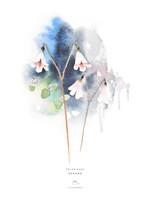Ester Visual: Vanamo 30x40 cm