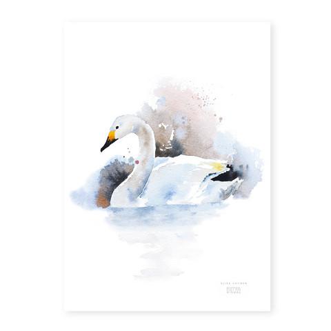 Ester Visual: Laulujoutsen A4, 21x30 cm